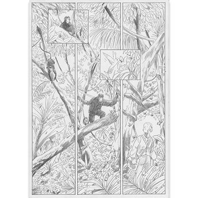 Planche originale Aux origines de Darwin pl 41